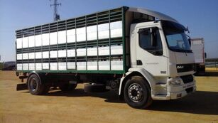 DAF LF55 250 djurtransport