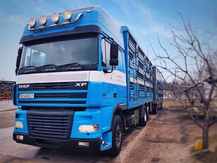 PEZZAIOLI djurtransport + djurtransport trailer