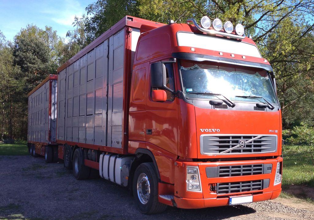 VOLVO FH12 480 djurtransport + djurtransport trailer